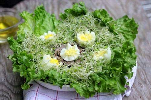 Salad Green Bean Sprout Recip